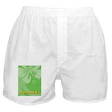 Akamai Ipad 2 Hard Case Boxer Shorts