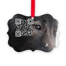 QR link to ABTC Health pages Ornament