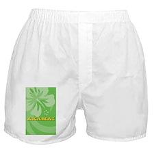 Akamai Kindle Kickstand Case Boxer Shorts
