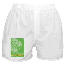 Akamai Clipboard Boxer Shorts