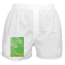 Akamai Ipad Mini Case Boxer Shorts