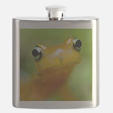 Salamander Flask