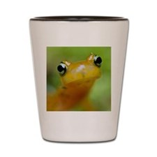 Salamander Shot Glass