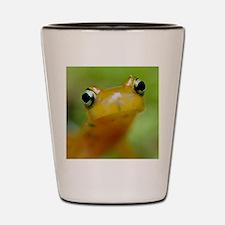 Salamander Shot Glass