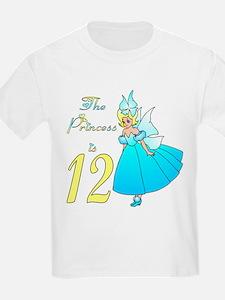 Fairy Princess Age 12 T-Shirt