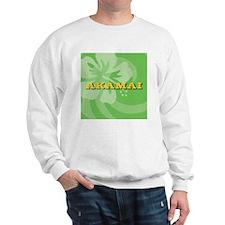 Akamai Round Car Magnet Sweatshirt