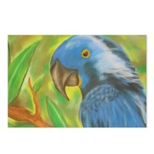 Blue Parrot Postcards (Package of 8)
