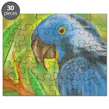 Blue Parrot Puzzle