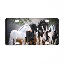 Stallions Aluminum License Plate