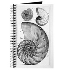 Engraving of a nautilus and an ammonite Journal