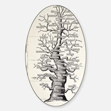 1886 French copy Haeckel 'tree of l Sticker (Oval)