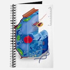 Cell types, artwork Journal