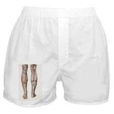Leg anatomy, 19th Century illustratio Boxer Shorts