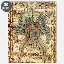 Circulatory system, 17th century Puzzle