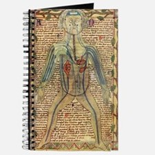 Circulatory system, 17th century Journal