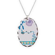 DNA packaging, artwork Necklace