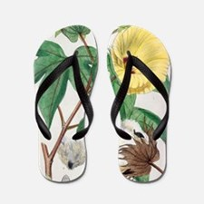 Pima cotton flowers, 19th century Flip Flops