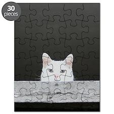 Peer Puzzle
