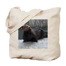 Icy Lunch Tote Bag