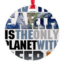 SAVE THE EARTH is the only PLANET W Ornament