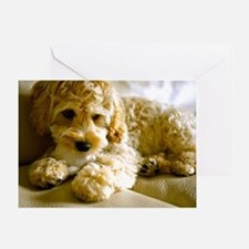 The Cockapoo Puppy Greeting Card