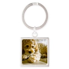 The Cockapoo Puppy Square Keychain