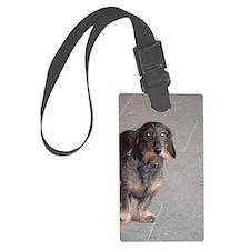 French Dog Luggage Tag