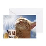Blind cat rescue candy Greeting Cards