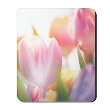 Beautiful Tulips Mousepad