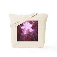 pf_h_ipad_2 Tote Bag