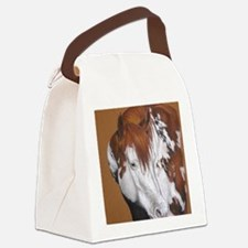 overo stallion Canvas Lunch Bag
