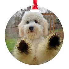 Goldendoodle Puppy Dog Ornament