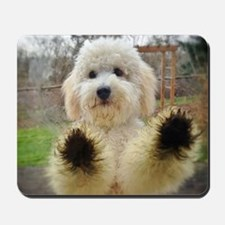 Goldendoodle Puppy Dog Mousepad