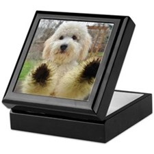 Goldendoodle Puppy Dog Keepsake Box