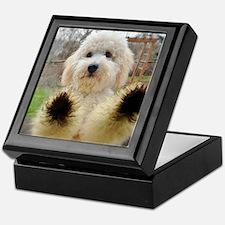 Goldendoodle Puppy Dog Keepsake Box