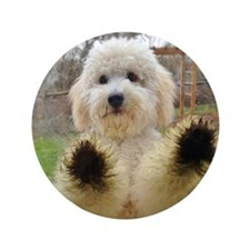 """Goldendoodle Puppy Dog 3.5"""" Button"""
