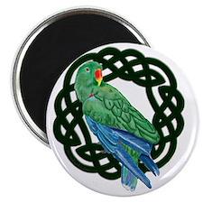 Celtic Eclectus Parrot Magnet