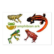 AAk logo with amphibians Postcards (Package of 8)