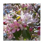 Flowering Cherry Tree Tile Coaster
