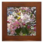 Flowering Cherry Tree Framed Tile