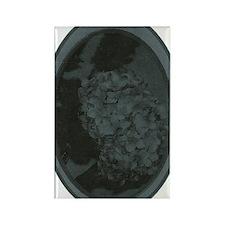 Retro Floral Black Rectangle Magnet