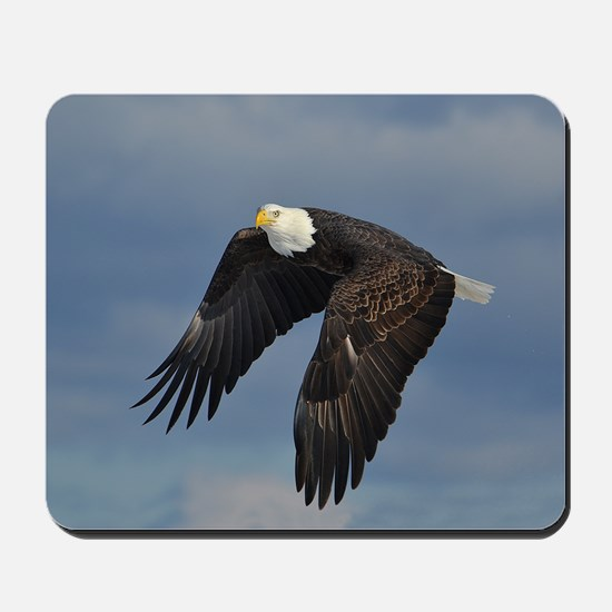 full crop eagle Mousepad