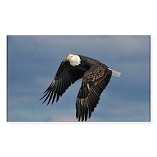 full crop eagle Decal