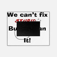 We can fix stupid for LIGHTS Picture Frame