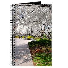 Cherry Blossoms 4X6 Journal