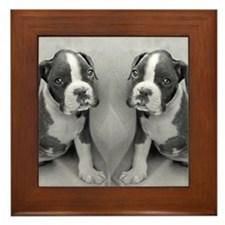 boxer puppy Framed Tile