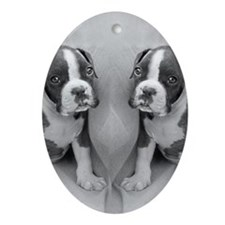 boxer puppy Oval Ornament