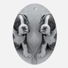 boxer puppy Oval Ornament