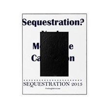 Sequestration? Picture Frame