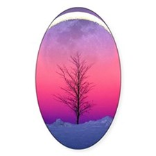 Pink Eclipse Decal